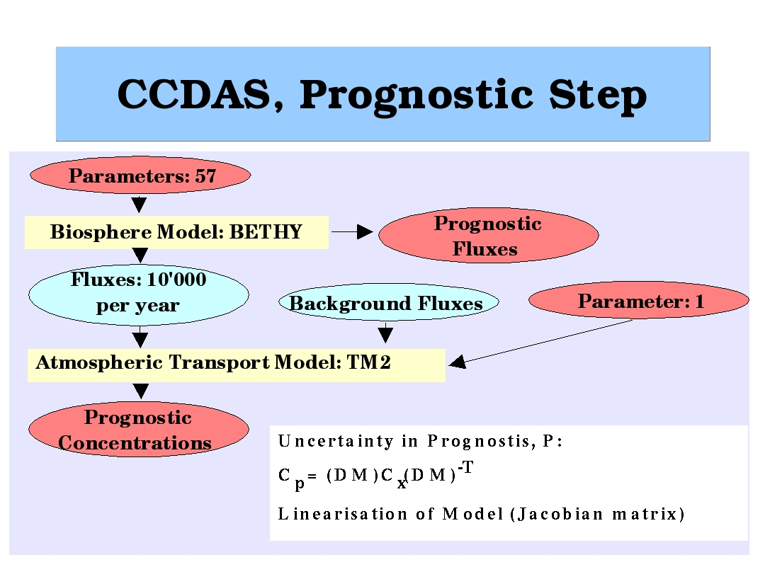 Ccdas Carbon Cycle Data Assimilation